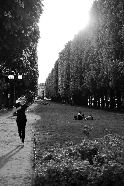 Jardin d'Erevan - Paris - Mai 2019
